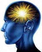 cerveau et hydratation